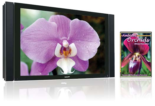 Ambient Orchids turns your TV into a beautiful orchid garden.