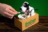 Bailey the Dog Bank image