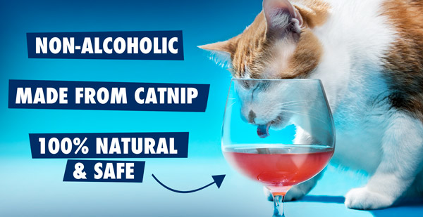Cat Wine is made from catnip