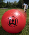 Giant Kickball Set