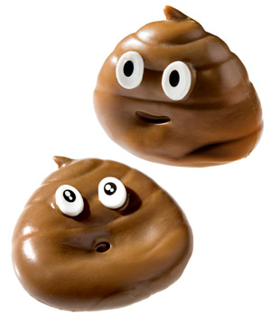 Sticky The Poo Sticky Moldable Toy That Looks Like
