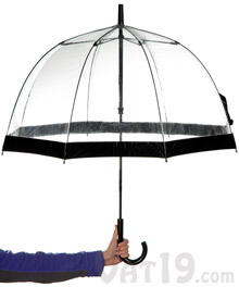 Birdcage Umbrella