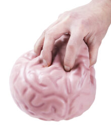 Giant Brain Ball