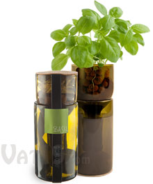 Grow Bottle Kit