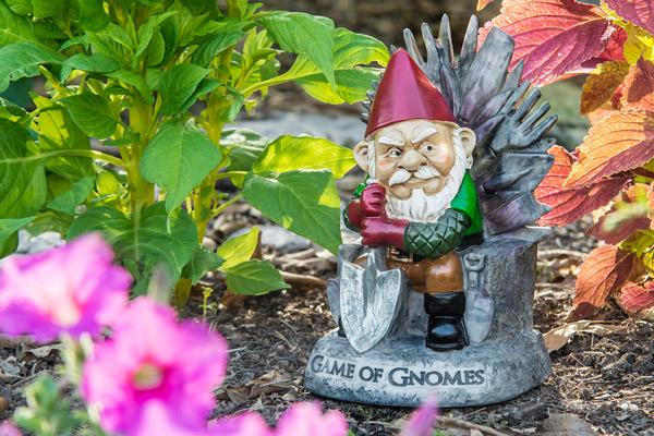Game of Gnomes Gnome presiding over his garden