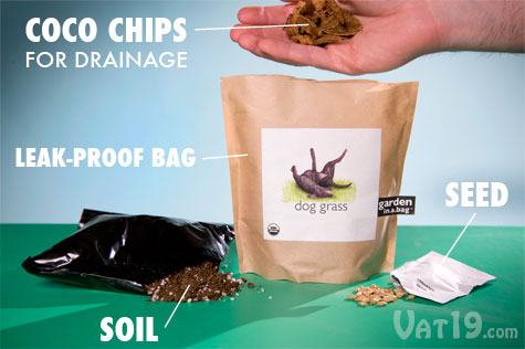 The Garden in a Bag includes everything you need to grow your own dog grass and cat nip.