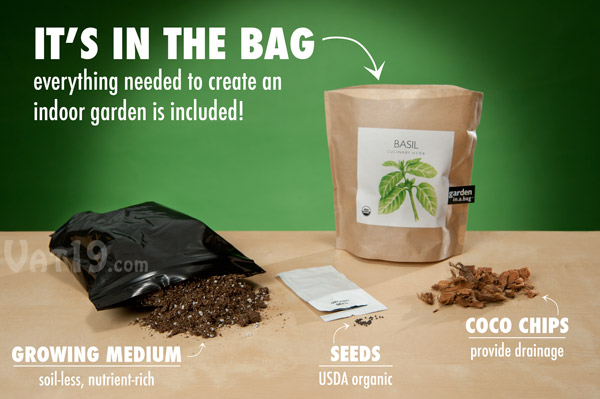 Garden in a Bag Grow your own culinary herbs indoors