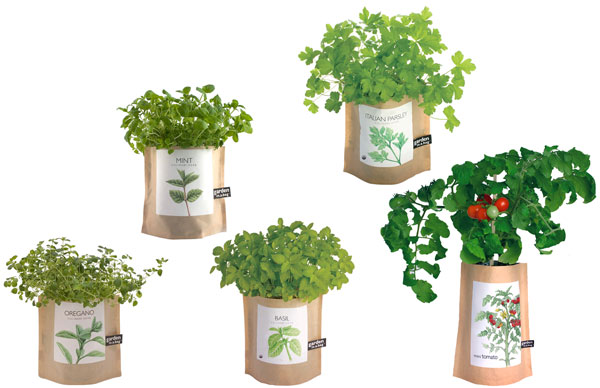 Choose from five different Garden in a Bag styles.