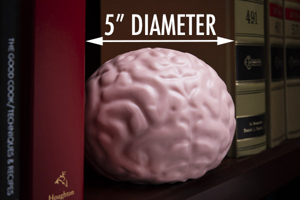 Smaller than your actual brain, but large enough to tackle every taut nerve.
