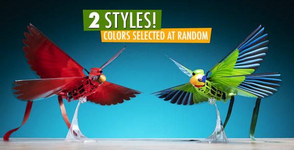 Go Go Bird colors