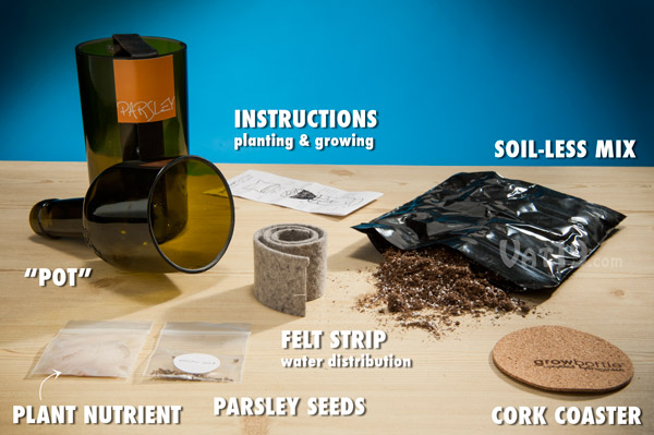 Grow Bottle Kits include everything you need to grow your own herbs using a repurposed wine bottle.
