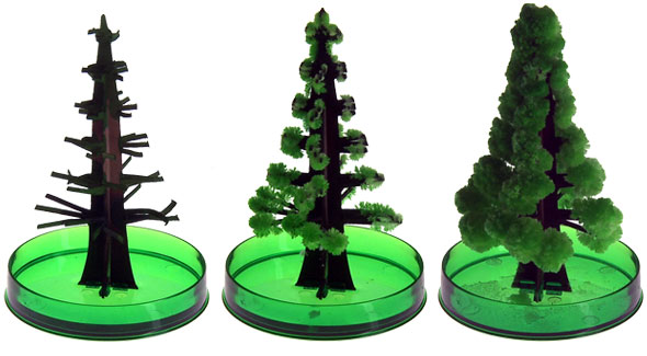 magic christmas tree grows in six hours - Mini Live Christmas Trees