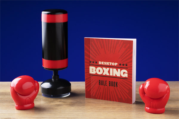 Includes a punching bag, 2 gloves, and a boxing booklet.