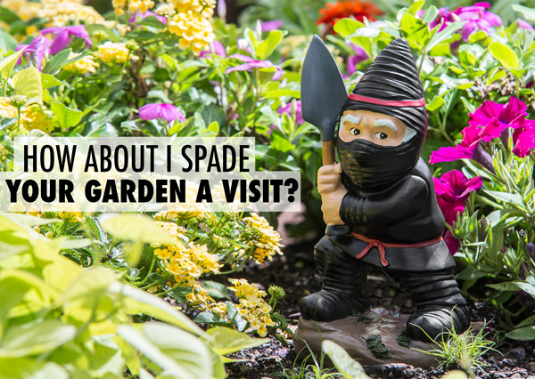 Ninja Garden Gnome: Diminutive folk creature trained in the art of ...