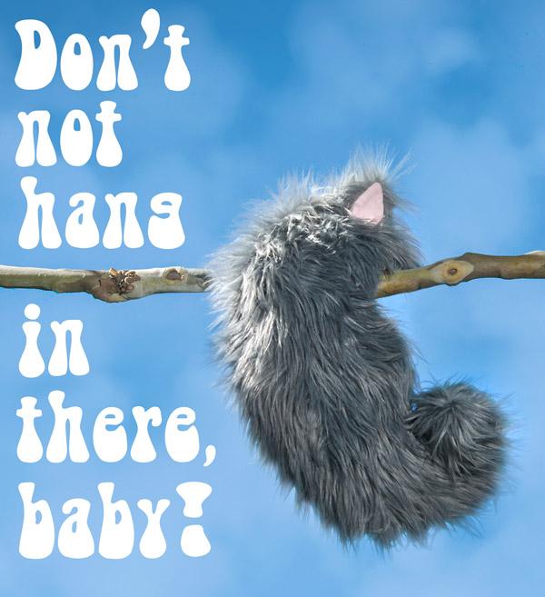 An inspirational Not-a-Cat Cat hangs from a tree