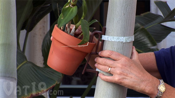 The Pot Latch Flower Pot Hanger can be screwed or tied to any vertical surface.