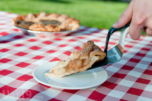 Cut and serve cakes, pies, and tarts with the Slice 'n Slide Cake Server.