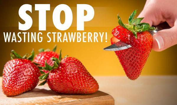 Stem Gem Efficient Strawberry Huller