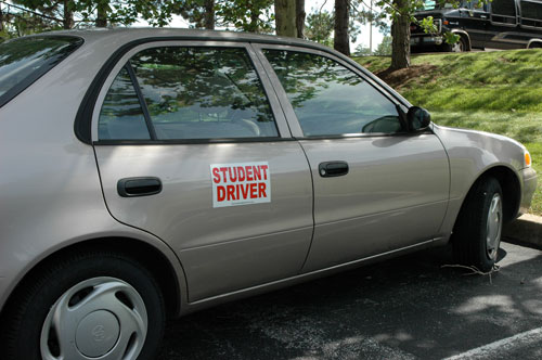graphic about Student Driver Sign Printable identified as Contemporary Driver Magnetic Scholar Driver Vehicle Symptoms