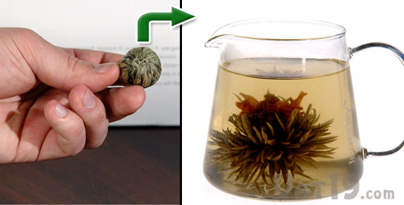 Teaposy Blooming Tea Gift Set Includes 6 Flowering Teas